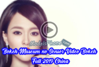 Bokeh Museum no Sensor Video Bokeh Full 2019 China