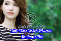Link Video Bokeh Museum No Sensor Full